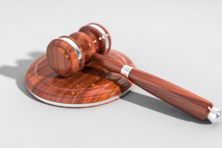 L'ACOMPANYAMENT A JUDICI